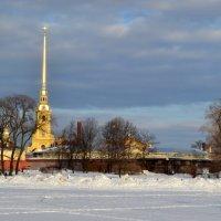 Петропавловская крепость :: Светлана Лебедева