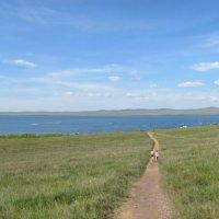 Хакасия, озеро Шира :: Татьяна Михеева