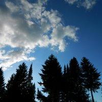 Небо :: Руслан Хайдаров