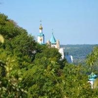 Святогорский монастырь :: Мария Шеметова