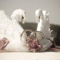 Лебеди... :: игорь козельцев