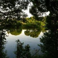 Лето в Измайловском парке :: Роман Аникин