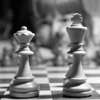 Черно - белая стратегия :: Влад Гончаров
