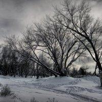 Славянский Курорт, Зима :: Алёна Дягелева