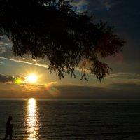 Золотое солнце :: Геннадий Лосев