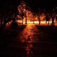 ночь, улица, фонарь... :: Денис Нечаев