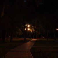 ночной сквер :: Денис Нечаев