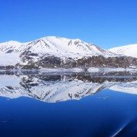 Арктика :: Андрей М