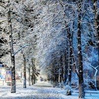 Зима 2012 :: Андрей Мельников