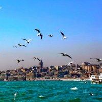 Босфорский пролив :: Ирма .