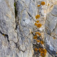 Камни... мхи...лишайники :: Navaho Indeec