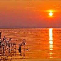 Рассвет на Днепре :: Александр