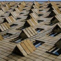 Немного геометрии :: Алексей Попов