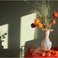 Сухой букет (из архива). :: Nonna