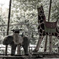 В мире животных :: Григорий Храмов