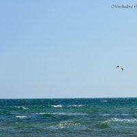 Чёрное море :: Ольга Мореходова