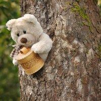 А эти пчёлы делают правильный мёд! :: Ирина Данилова