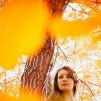 Осень :: Светлана Кудеринова