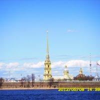 Петропавловский собор. Вид через Неву. :: Татьяна (Децепулька) Никитина