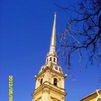 Петропавловский собор :: Татьяна (Децепулька) Никитина