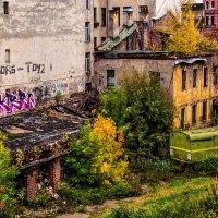 Осень питерских дворов :: Max Hyde
