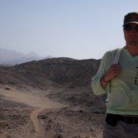 Пустыня :: Дмитрий Брицко