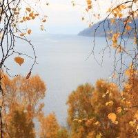 Осень. :: Ирина