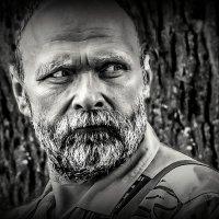 КРЕПКИЙ ОРЕШЕК... :: Алексей Лебедев