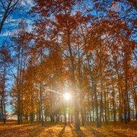 Осень в Забайкалье :: Даба Дабаев