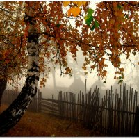 Снова осень ... :: Сергей Федосеев