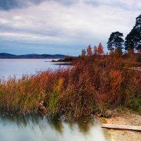 Осенний вечер у Исетского озера. :: Pavel Kravchenko