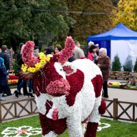 День города :: Svetlana Shumilova