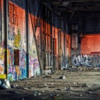 заброшенный Детройт :: Katerina Tokareva