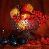 Густой цвет осени :: Татьяна Аистова
