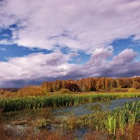 Осенний пруд :: gregory `