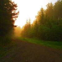 Рассвет в утреннем тумане :: Александр Швецов