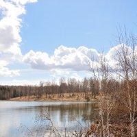 Озеро. Весна. :: Андрей В.