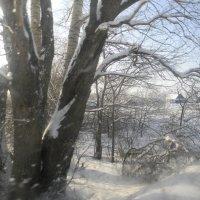 Зимнее утро :: Айгуль Валитова