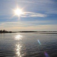 река Обь :: Наташа Орлова