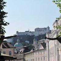 Вид на крепость Хоэнзальцбург (немного юмора) :: Ольга Иргит