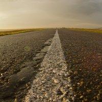 Белая дорожка :: Дамир Каримов