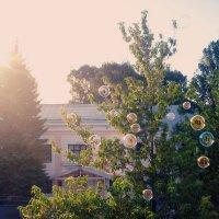 Пузырики. :: Александра Фокина