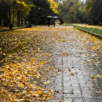 осень :: ILSHAT Gabdrakhmanov