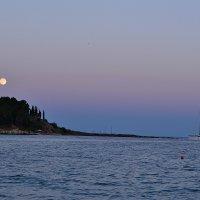 Путь к луне :: Дмитрий Гончаренко