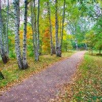 Дорожка в парке :: Денис Бугров