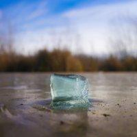 Инородное тело, или ледяная бородавка :: Денис Антонов