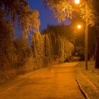 Ночные привидения))) :: Игорь Кубай