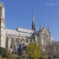 Улицы Парижа 3 :: Ekaterina Stafford