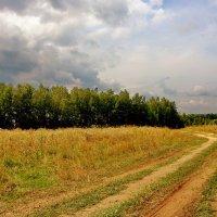 Просёлочная дорога :: Тамара Бучарская