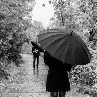 Люди с зонтами :: Наталья Буданова